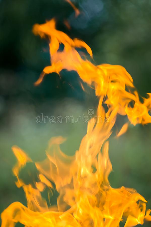 Brandbränning på gatan Grillfestwienerkorvar royaltyfri bild