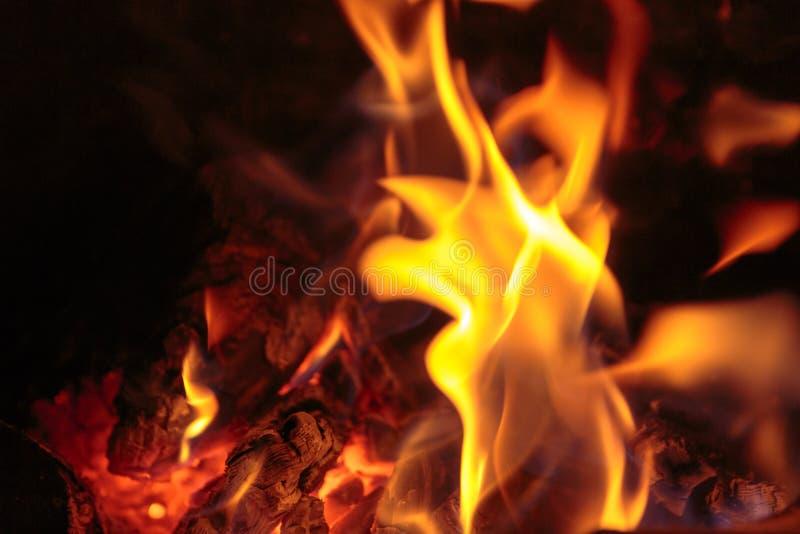 Brandbränningbrand och flamma royaltyfri bild