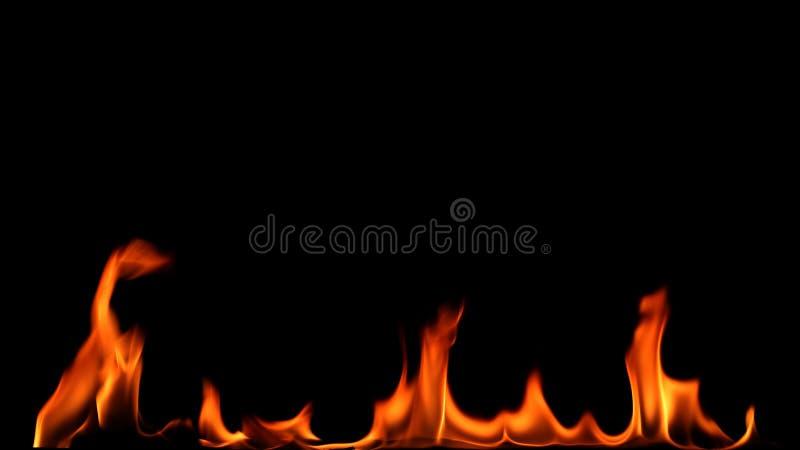 Brandeld på svart bakgrund royaltyfria bilder