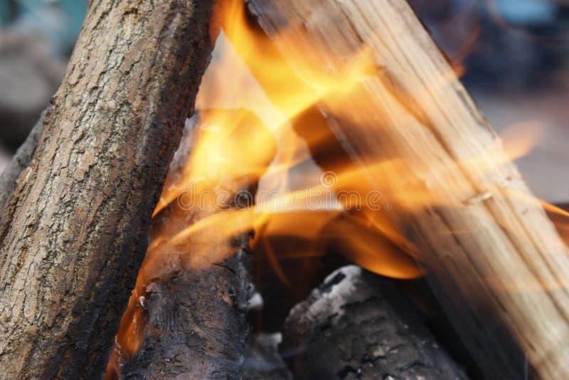 Brandende boom in de grill Vuur op de grill met rook Brandstichting of natuurramp Dicht vuur Brand in aard campfire stock fotografie