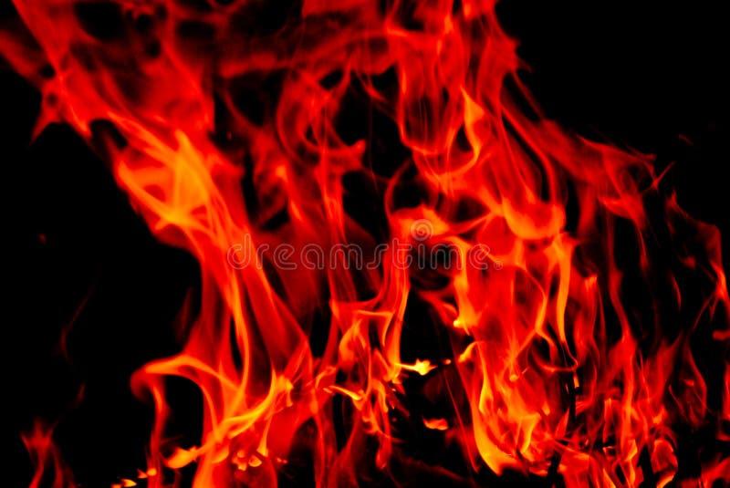 Brandende Brand Gratis Stock Foto