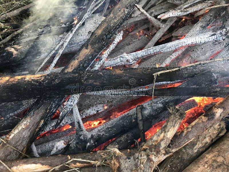 Brandende logboeken die steenkolen worden stock foto
