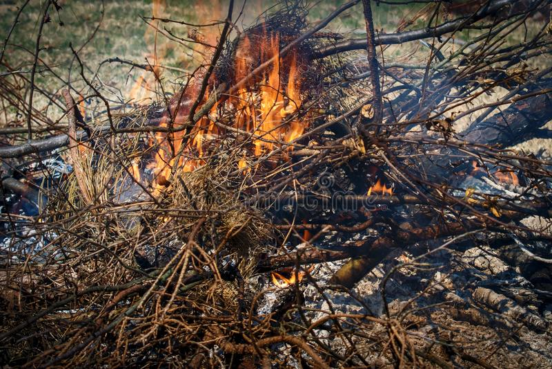 Brandende takken en borstel en vlammen stock foto