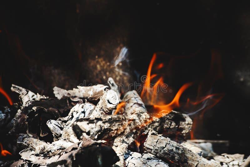 Brandende vlam en firewoods stock afbeelding