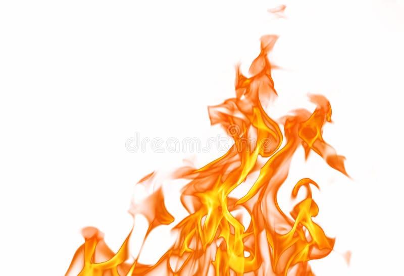 brandflamma royaltyfri fotografi