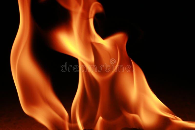 brandflamma arkivfoto