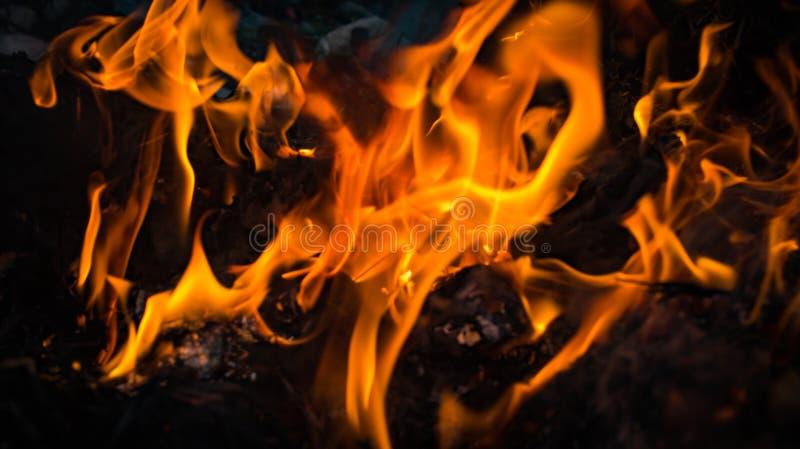Brandflamman bränner på svart bakgrund royaltyfri bild