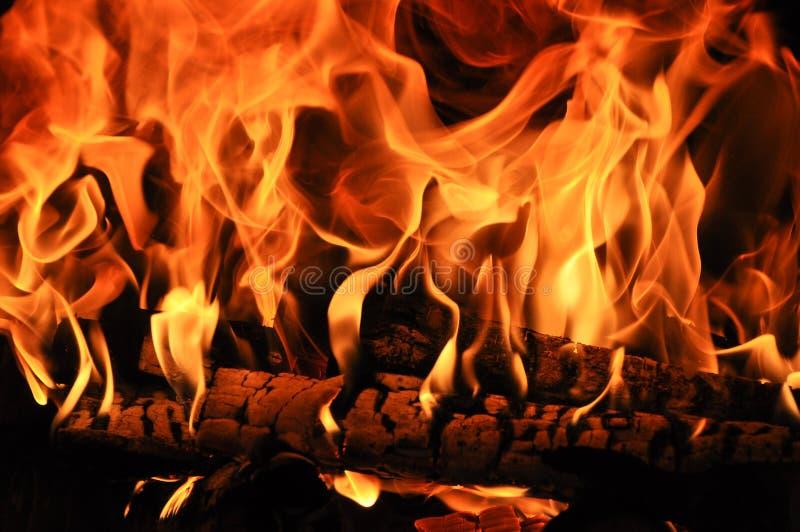 Brandhout in de brand wordt gebrand die stock afbeelding