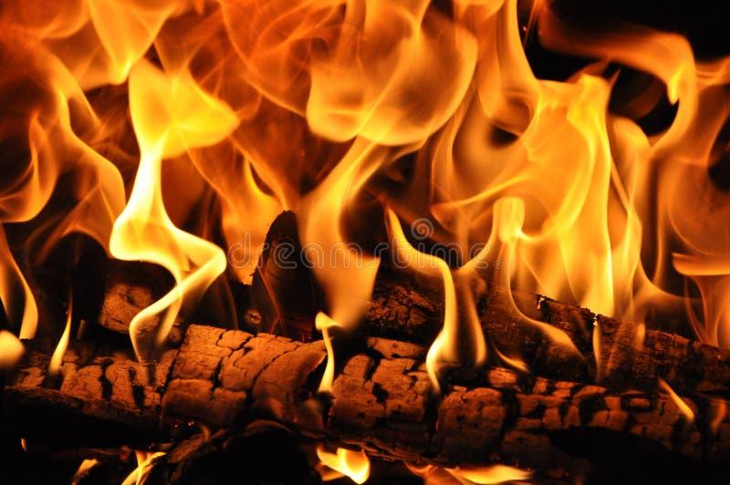 Brandhout in de brand wordt gebrand die stock afbeeldingen