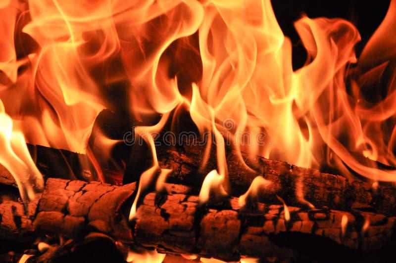 Brandhout in de brand wordt gebrand die stock foto