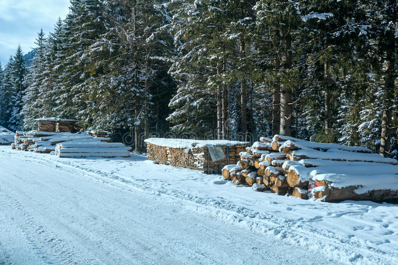 Brandhout langs de winterweg van het land stock foto