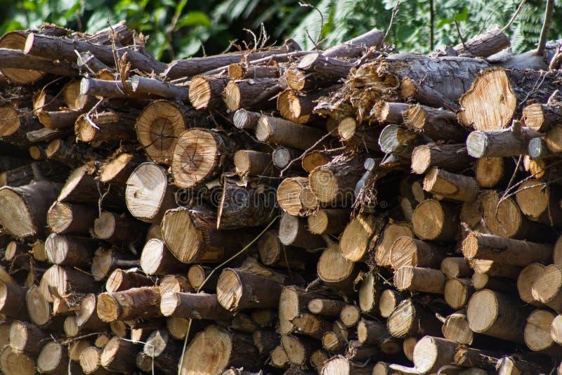 Brandhout voor de Winter stock foto