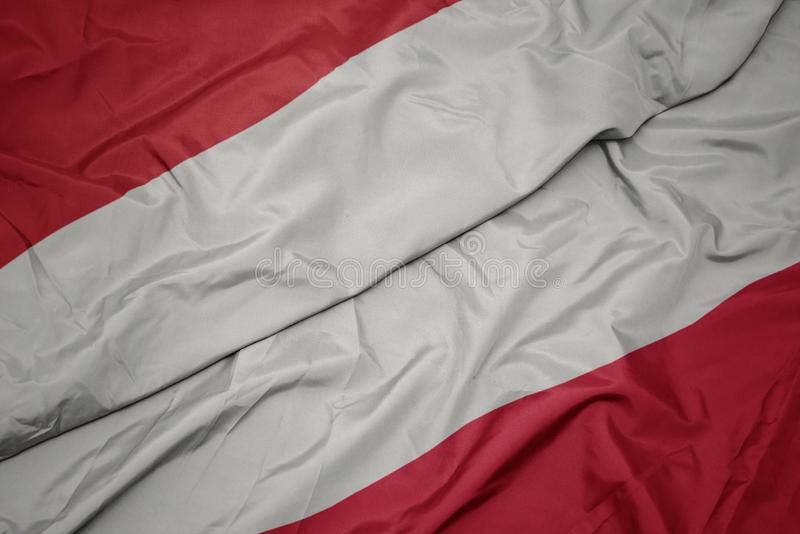 brandissant le drapeau coloré de la pologne et le drapeau national de l' indonésie photos libres de droits