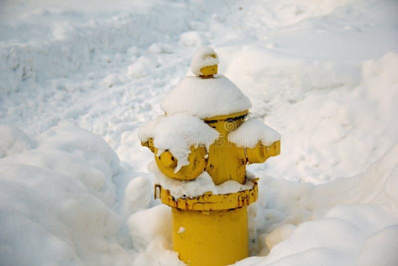 Brandkraan met sneeuw wordt behandeld die royalty-vrije stock fotografie