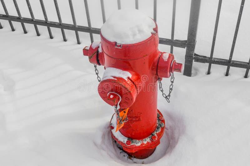 Brandkraan in sneeuw stock afbeeldingen