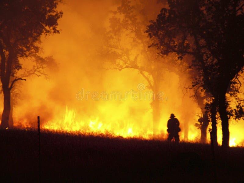 brandlinje fotografering för bildbyråer