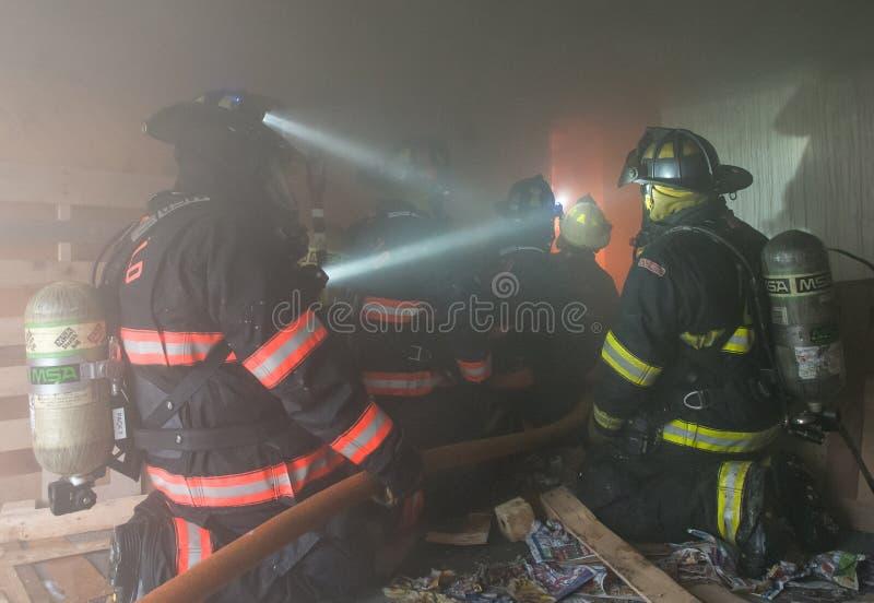 Brandmän på Live Burn Training arkivbild