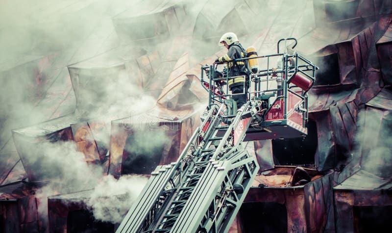 Brandman på stege arkivbilder