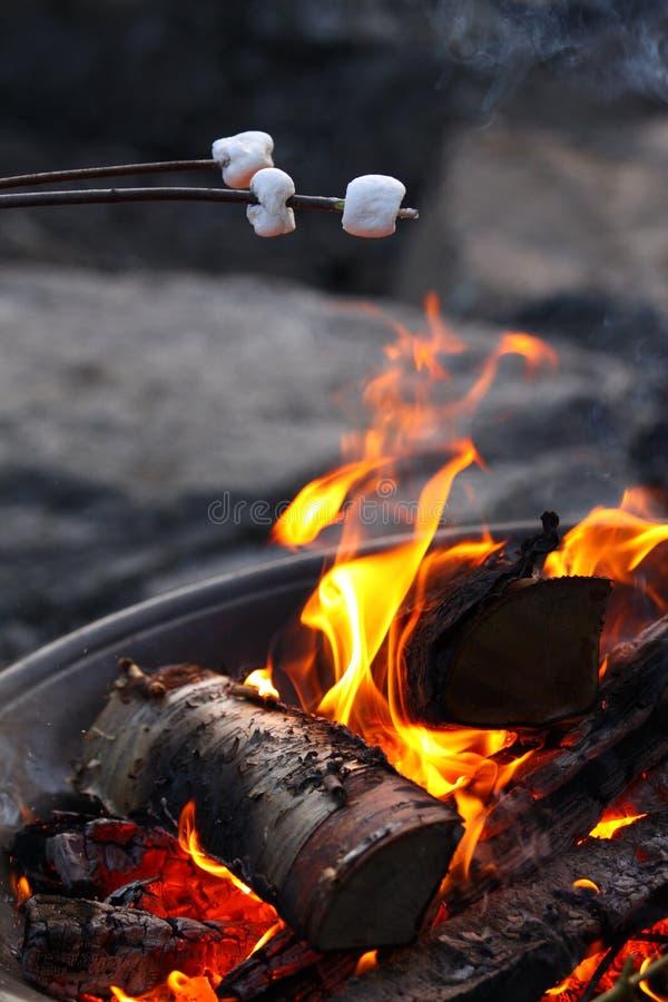 brandmarshmellows över stekande royaltyfri bild