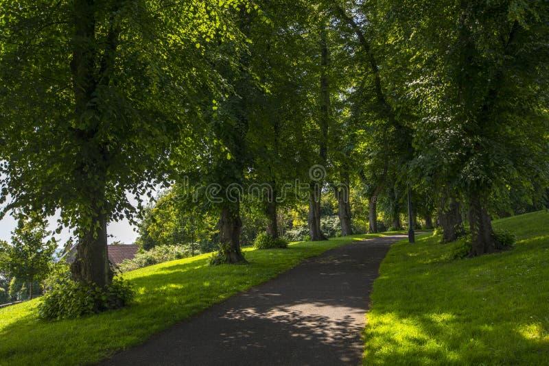 Brandon Hill Park dans Bristol images stock