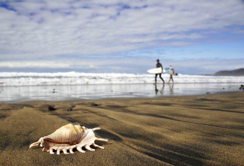 Brandung-Strand lizenzfreies stockbild
