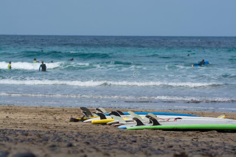 Brandungsbretter auf sandigem Strand, surfschool Famara-Strand, Lanzarote stockbilder