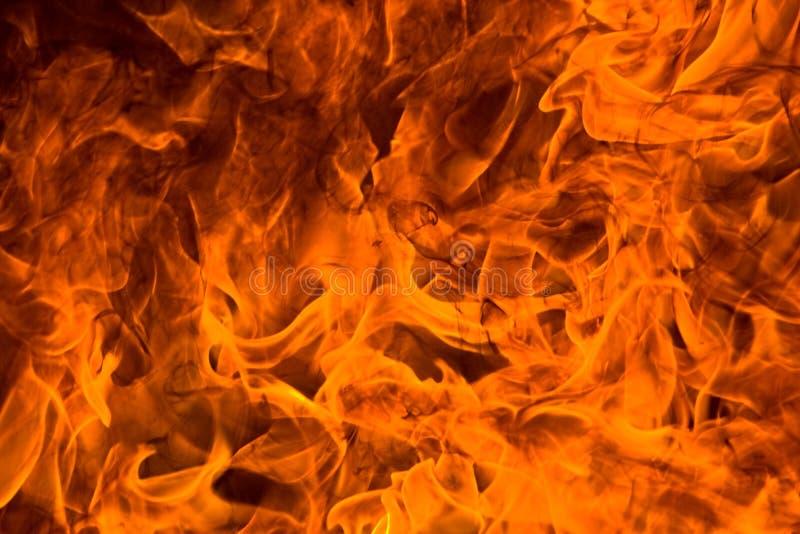 brandursinne arkivbilder