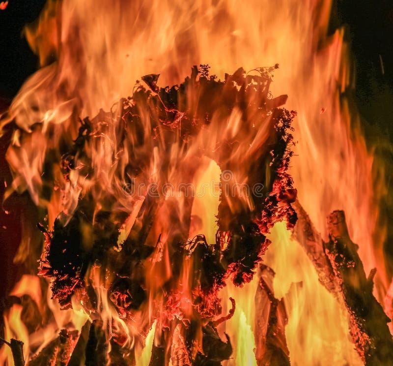 Brandvlam, brandende brandhout en kroon stock foto