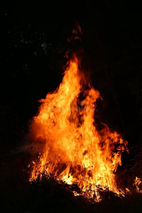 Brandvlammen die gras op een zwarte achtergrond branden stock fotografie