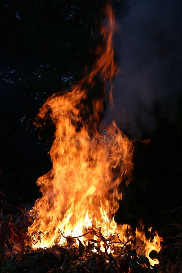 Brandvlammen die op een donkere achtergrond branden stock foto