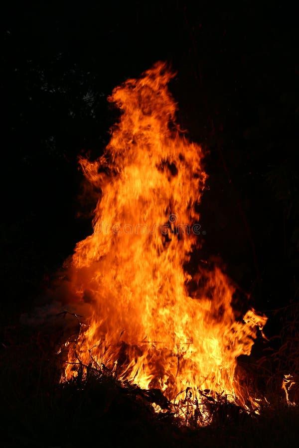 Brandvlammen die op een donkere achtergrond branden stock afbeelding