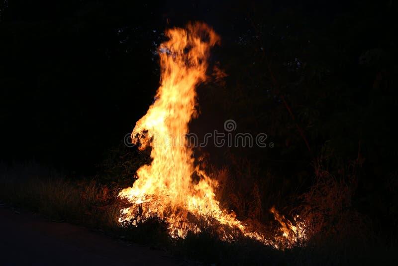 Brandvlammen die op een donkere achtergrond branden stock fotografie