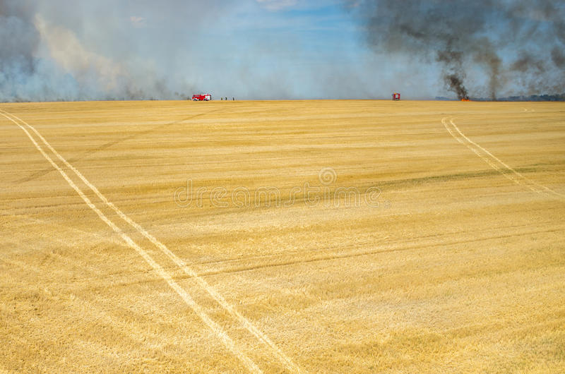 Brandweermanvrachtwagen die aan het gebied op brand werken stock fotografie