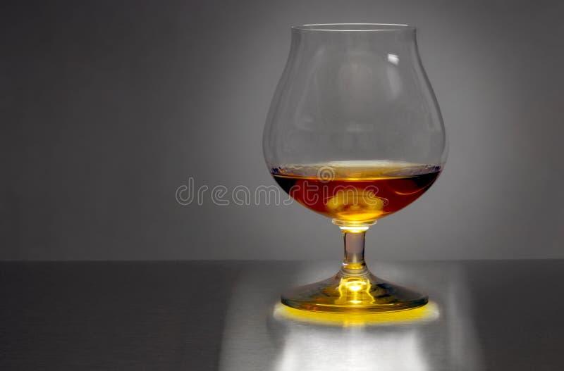 brandy obraz royalty free