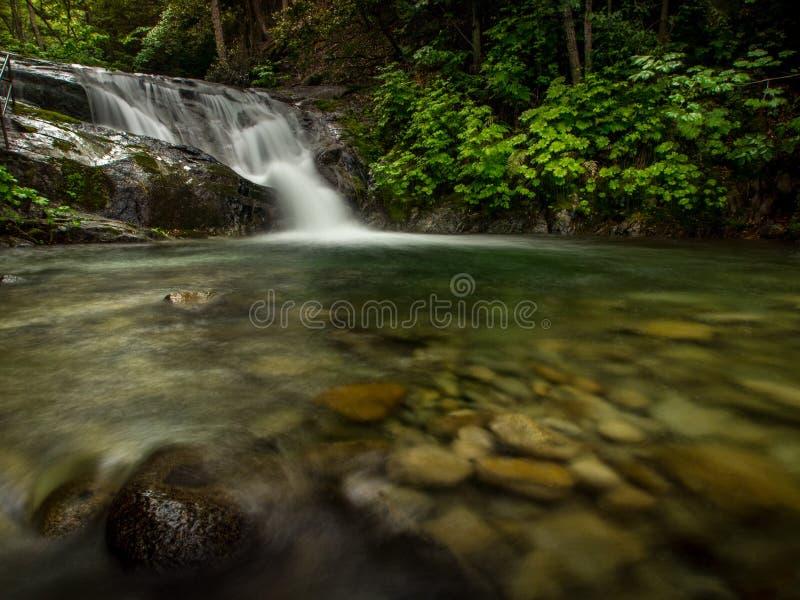 Brandy Creek Falls 2 arkivfoton