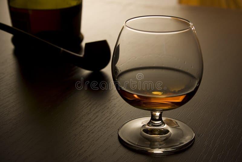 Brandy e tubo III fotografia stock