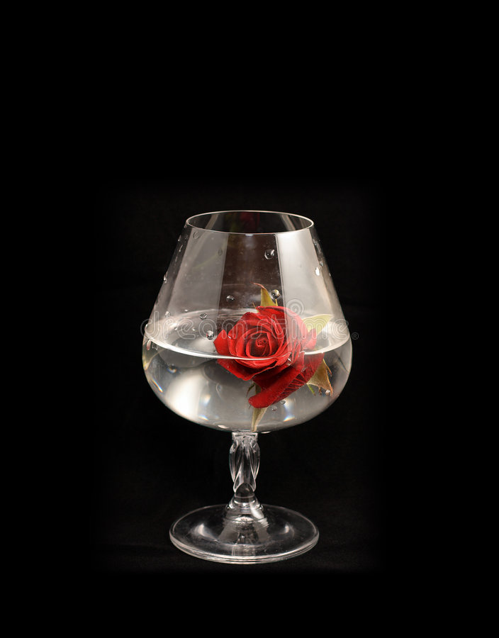 Brandy glass and red rose royalty free stock images