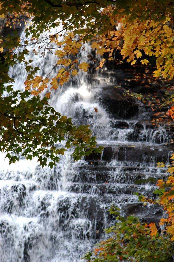 Download Brandywine Falls stock photo. Image of fall, change, rocks - 2352