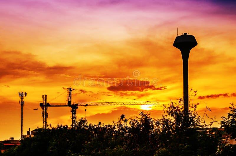 Branschväxt med solnedgång fotografering för bildbyråer
