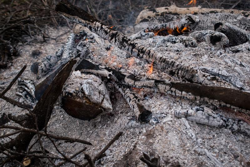 Brasa, kol och aska i skogen arkivfoto