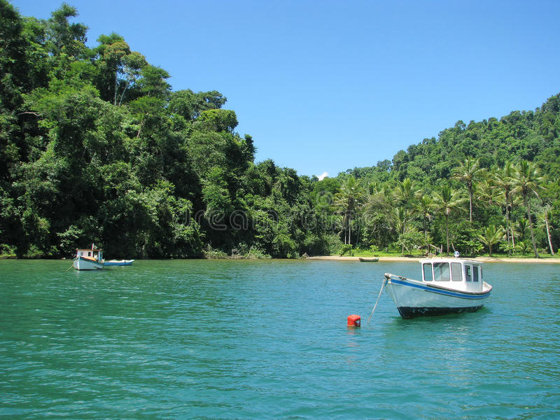 Brasil: amazing Costa Verde ( royalty free stock image