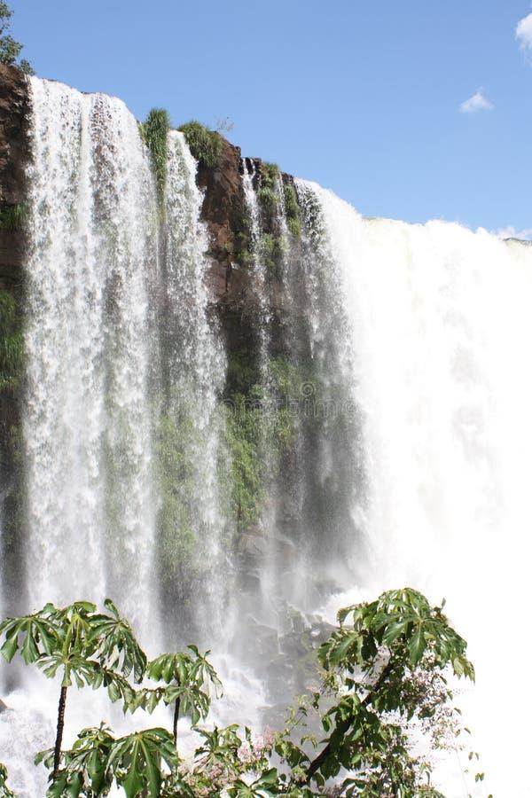 Brasil Tropisk Vattenfall Royaltyfri Foto