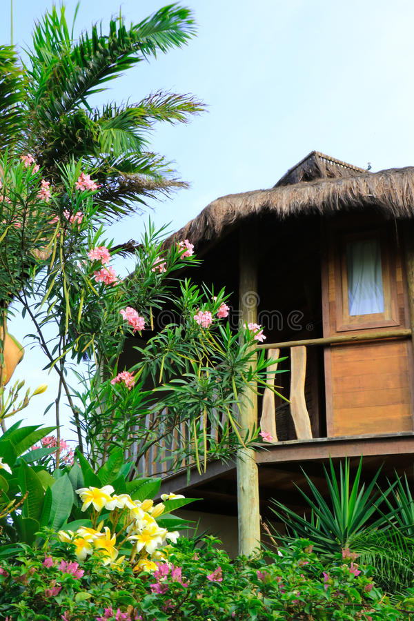 Brasilian bungalow i gräsplanen royaltyfria bilder