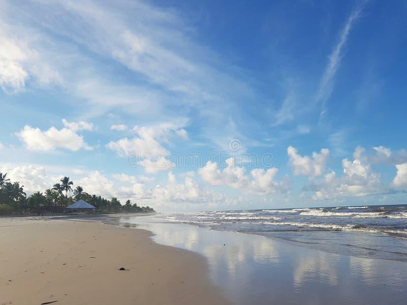 Brasiliana Spiaggia стоковые изображения rf