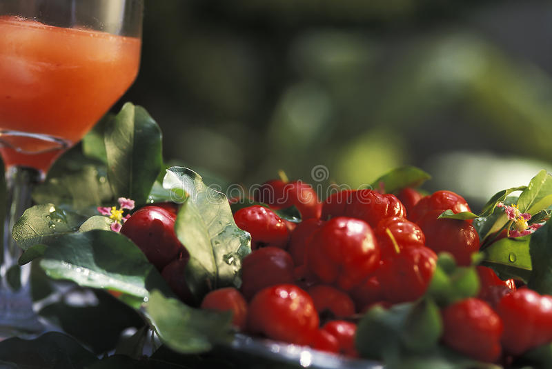 Brasiliandrinkar: fruktsaft för acerola (sur körsbär) royaltyfri fotografi