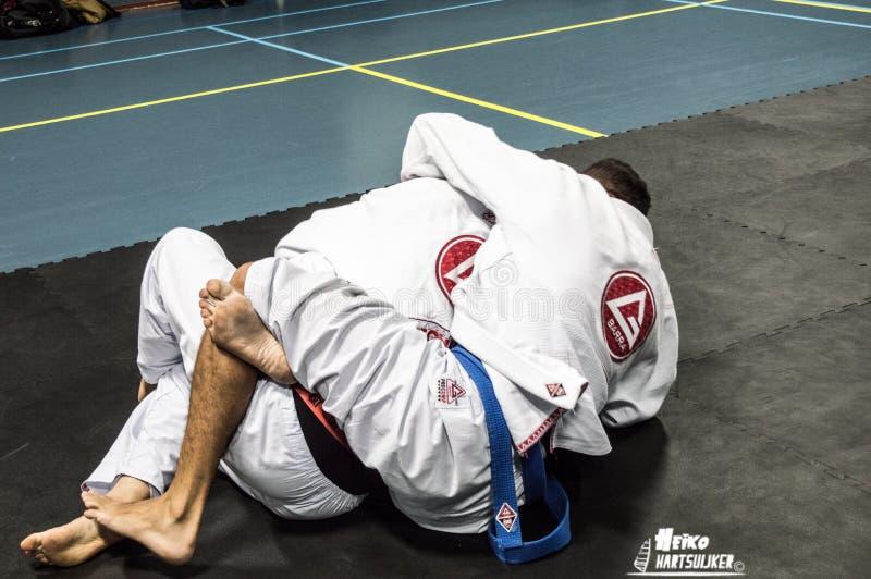 Brasilianer Jiu Jitsu stockbild