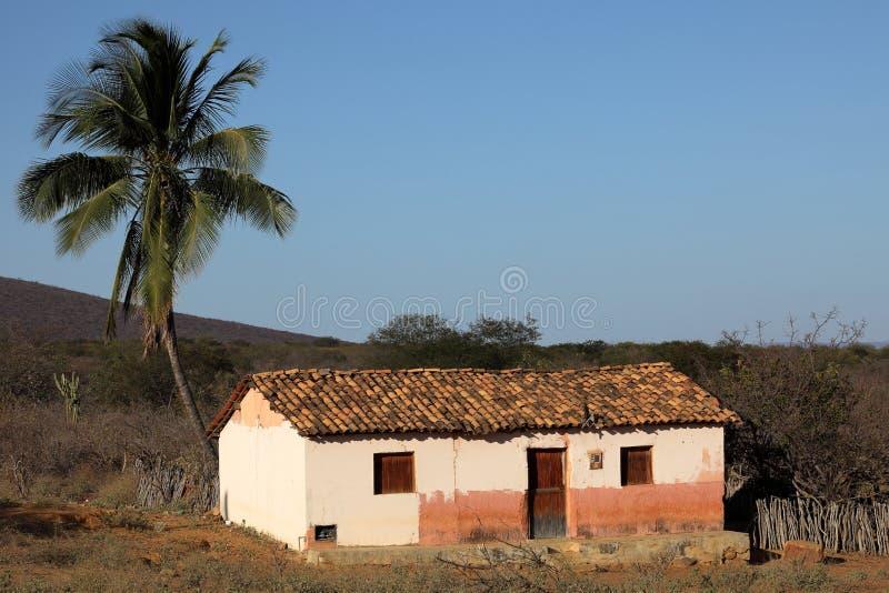 Brasilianisches Dorf im Caatinga lizenzfreie stockfotos