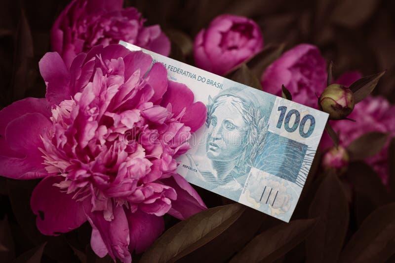 Brasilianisches Geld, hundert Reais, unter blühenden Blumen lizenzfreie stockfotografie