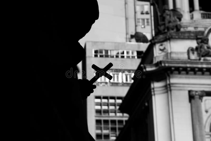 Brasilianska ensliga statyer royaltyfri fotografi