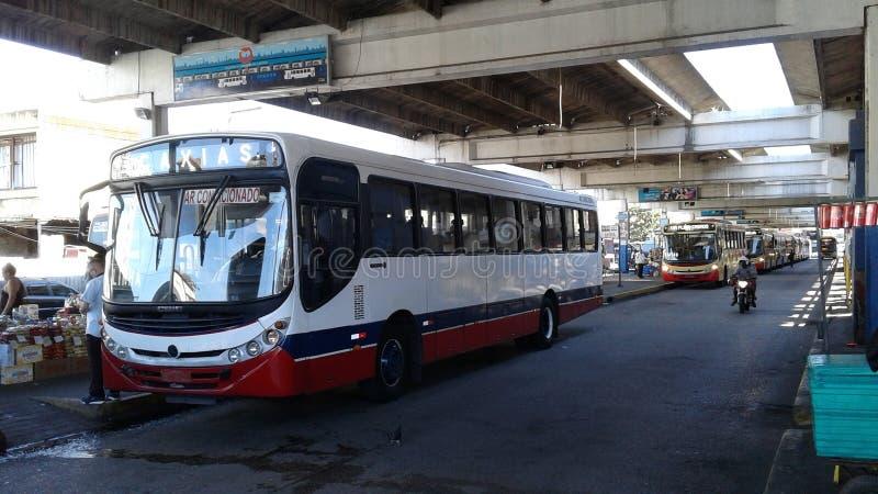 Brasilien - Rio de Janeiro - central - i stadens centrum - buss arkivbild